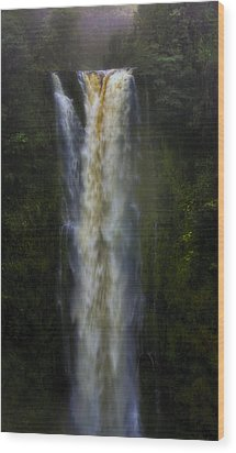 Wood Print featuring the photograph Akaka Falls by Ellen Heaverlo