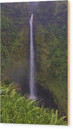 Akaka Falls Wood Print