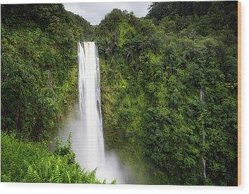 Wood Print featuring the photograph Akaka Falls by Ryan Manuel
