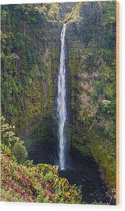Akaka Falls - The Big Island Hawaii Wood Print by Brian Harig
