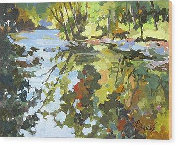 Alabama Reflections Wood Print