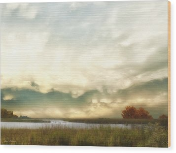 Alan Fresh Creek Wood Print