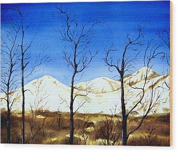 Alaska Blue Sky Day  Wood Print by Brenda Owen