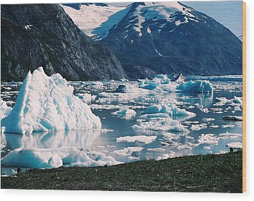 Wood Print featuring the photograph Alaska In The Spring by Judyann Matthews