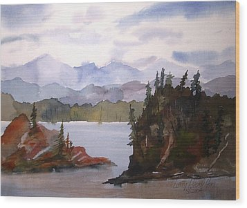 Alaska Inside Passage Wood Print by Larry Hamilton