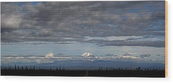 Alaska Mountains Wood Print by Dave Clark