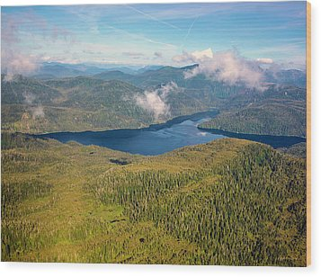 Wood Print featuring the photograph Alaska Overview by Madeline Ellis