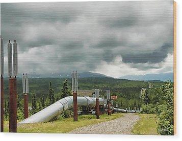 Alaska Pipeline Wood Print by Dyle   Warren