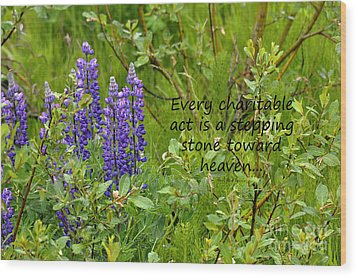 Wood Print featuring the photograph Alaskan Lupine Heaven by Diane E Berry