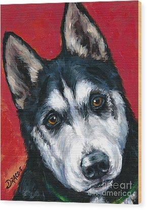 Alaskan Malamute Portrait On Red Wood Print by Dottie Dracos