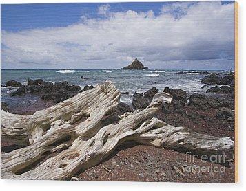 Alau Islet, Driftwood Wood Print by Ron Dahlquist - Printscapes