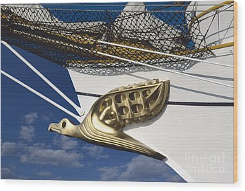 Wood Print featuring the photograph Albatross Figurehead by Heiko Koehrer-Wagner