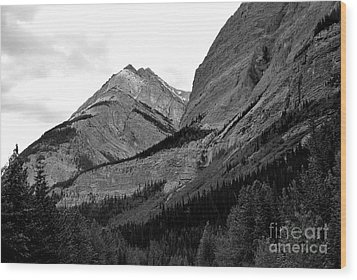 Wood Print featuring the photograph Alberta, 2015 by Elfriede Fulda
