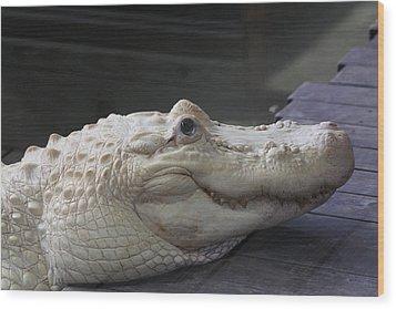 Albino Gator Wood Print
