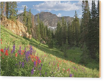 Albion Basin Wasatch Mountains Utah Wood Print