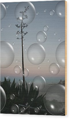 Alca Bubbles Wood Print by Holly Ethan