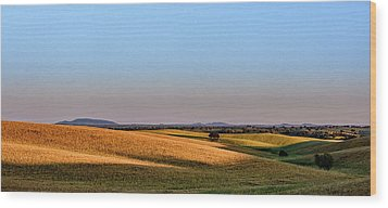 Wood Print featuring the photograph Alentejo Fields by Marion McCristall
