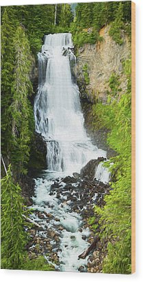 Wood Print featuring the photograph Alexander Falls - 2 by Stephen Stookey