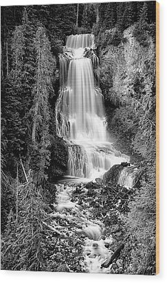 Wood Print featuring the photograph Alexander Falls - Bw 1 by Stephen Stookey