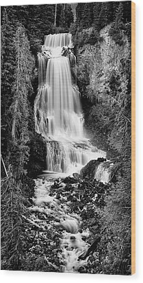 Wood Print featuring the photograph Alexander Falls - Bw 2 by Stephen Stookey