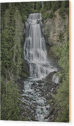 Wood Print featuring the photograph Alexander Falls by Stephen Stookey