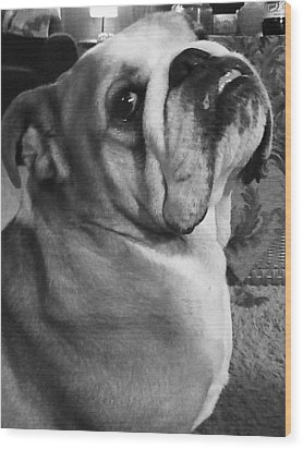 Alfred Hitchcock Bullie Pose Wood Print