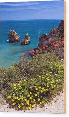 Algarve Coast In Spring Wood Print by John McKinlay