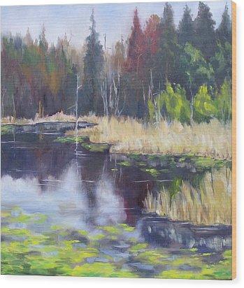 Algonquin Marsh Wood Print by Diane Daigle