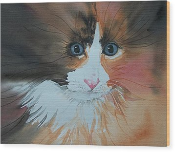 Wood Print featuring the painting Ali Cat Abstract by Lynn Babineau