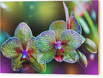 Alien Orchids Wood Print by Bill Tiepelman