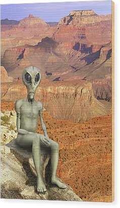 Alien Vacation - Grand Canyon Wood Print by Mike McGlothlen