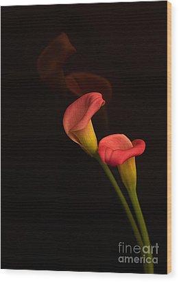Alison's Flower Wood Print by Robert Pilkington