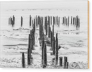 All That Is Left Wood Print by Joe Hudspeth