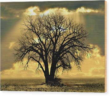 All That Remains  Wood Print by Julie Hamilton