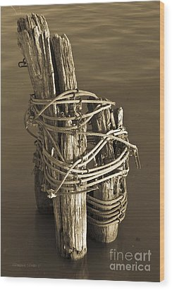 All Tied Up Wood Print by Gordon Wood