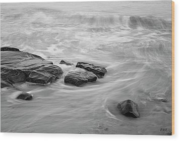 Wood Print featuring the photograph Allens Pond Xiii Bw by David Gordon