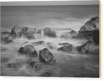Allens Pond Xix Bw Wood Print by David Gordon