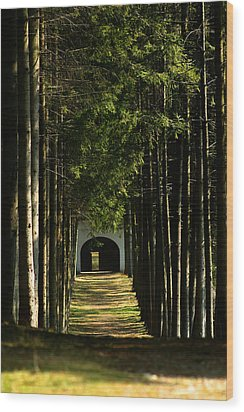 Alley At The Monastery Wood Print