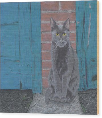 Wood Print featuring the drawing Alley Cat by Arlene Crafton