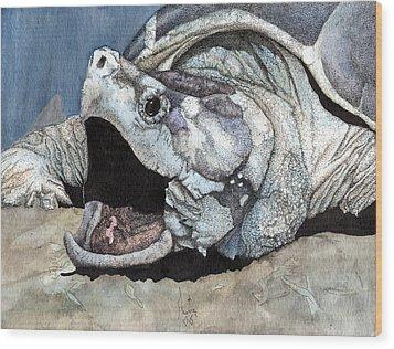 Alligator Snapping Turtle Wood Print by Preston Shupp