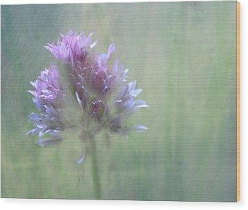 Allium Impressionism Wood Print