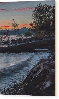 Almanor Driftwood Wood Print