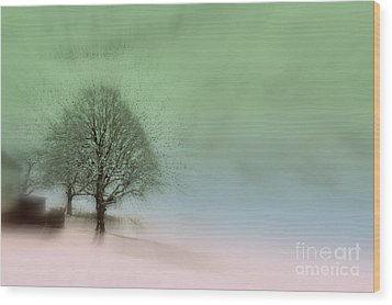 Wood Print featuring the photograph Almost A Dream - Winter In Switzerland by Susanne Van Hulst