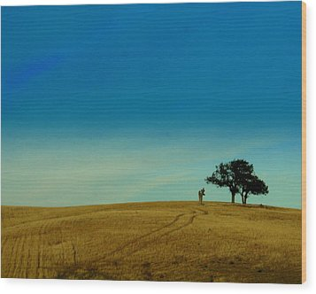 Almost Home Wood Print by Kerry Reed