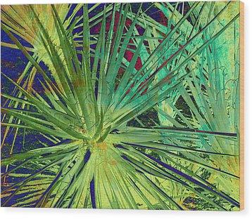 Aloe Vera Plant Wood Print by Susanne Van Hulst