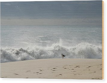 Alone - Jersey Shore Wood Print