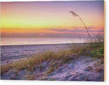 Wood Print featuring the photograph Alone At Dawn by Debra and Dave Vanderlaan