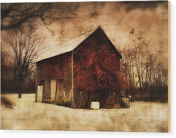 Alone At Sunset Wood Print by Mary Timman