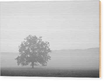 Wood Print featuring the photograph Alone by Bob Decker