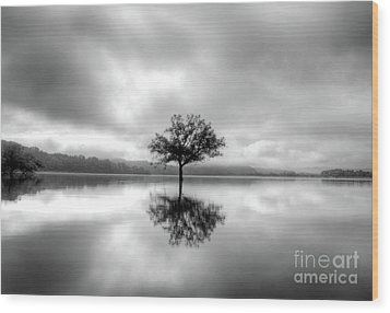 Wood Print featuring the photograph Alone Bw by Douglas Stucky